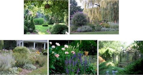 garden-03-collage.jpg